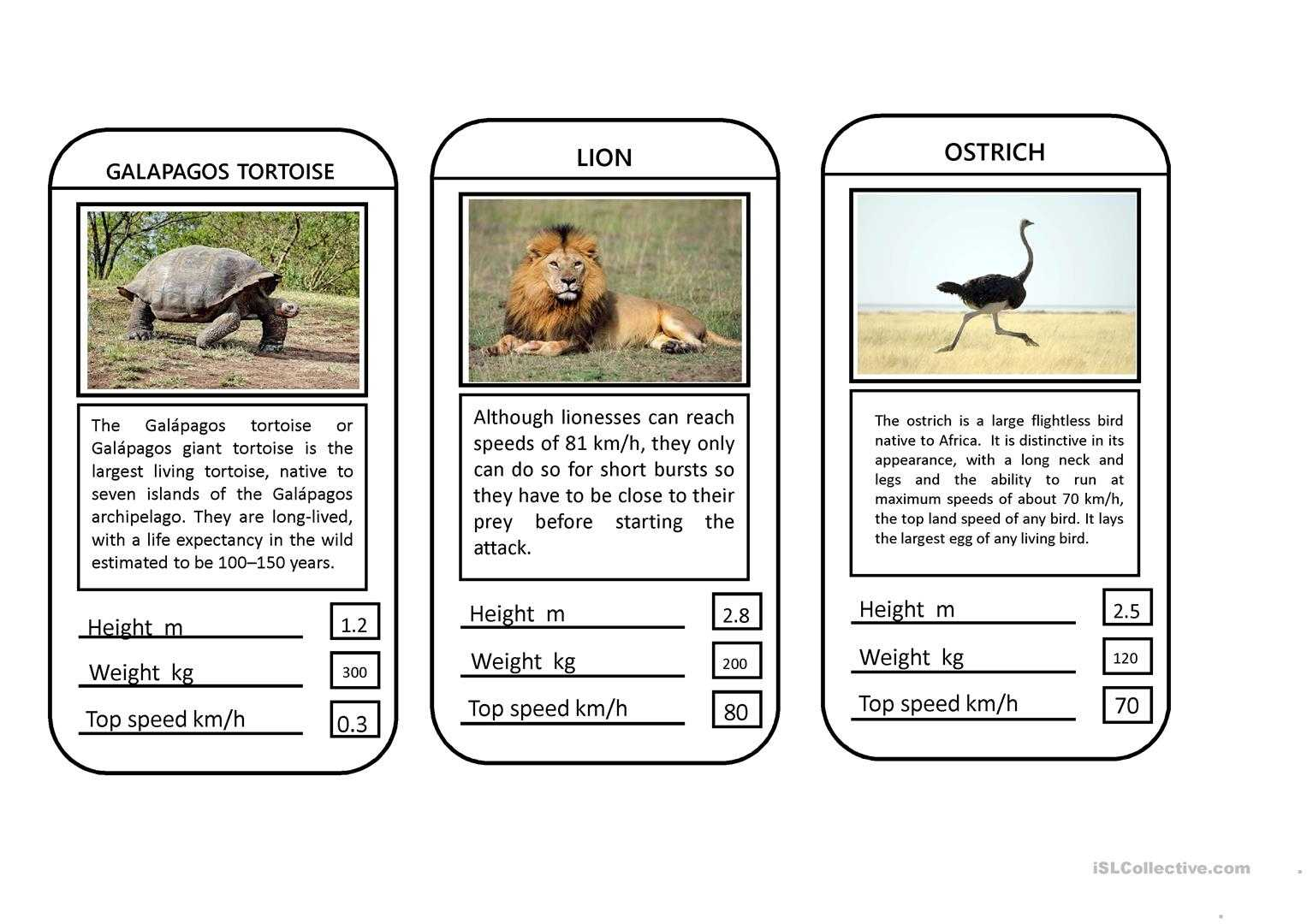 Animal Top Trumps Game - English Esl Powerpoints For Inside Top Trump Card Template